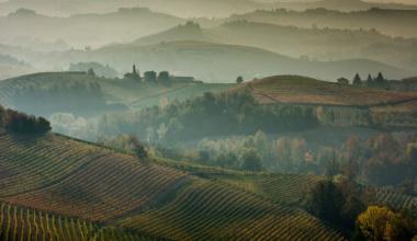 Langhe, il paesaggio del vino e i vini del paesaggio