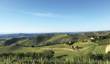 """Langhe and Roero restart from the """"Vinsieme"""" project"""